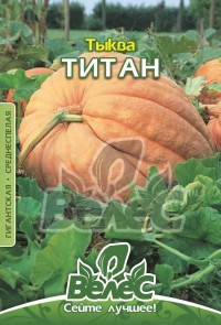 Семена тыквы Титан 10г ТМ ВЕЛЕС, фото 2