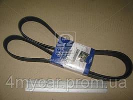 Ремень поликлиновой (производство Hyundai-KIA ), код запчасти: 2521227020