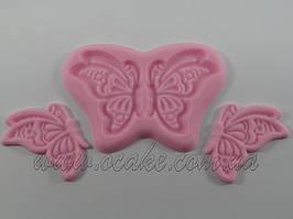Вайнер бабочка