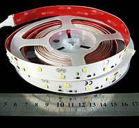 Світлодіодна стрічка тепло біла R0B48TD 2835-48-IP33-WW-16-24 14.4Вт 24вольт 7247