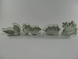 Плунжер листья ассорти