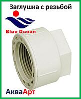 Заглушка с внутренней резьбой 20х1/2 BLUE OCEAN