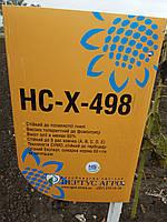 Семена подсолнечника НСХ 498 под гранстар, Урожайный и засухоустойчивый гибрид Сумо 38 ц/га.
