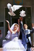 Профессиональная свадебная фото - и видеосъёмка