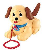 Fisher-Price Каталка маленький щенок Снупи Brilliant Basics Lil Snoopy