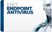 ESET Endpoint Antivirus 1 year subscription(продление) (ESET)
