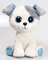 Мягкая игрушка Собачка глазастик - SBB0