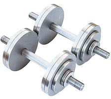 Разборные гантели металлические 2 по 12 кг (наборные, гантели для дома, общий вес 24кг)