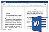 Office Standard 2016 SNGL OLP NL (021-10554) (Microsoft)