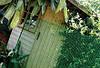 Сетка пластиковая садовая для забора