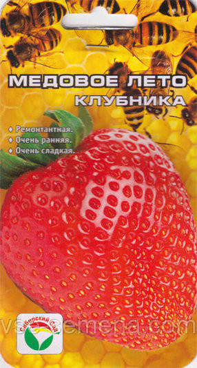 Земляника Медовое Лето, 5шт. семян