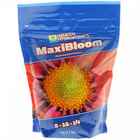 Maxi Series Bloom 1 кг. Удобрение минеральное GHE