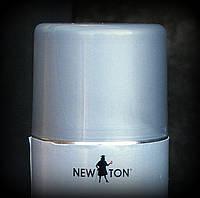 Эмаль для стальных и оцинкованных поверхностей New Ton серебристая RAL 9006
