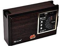Радио радиоприемник  RX-9933UAR GOLON