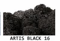 """МОХ для декора. Прямые поставки от """"Artis Green"""". Black 16"""