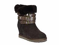 Зимние женские замшевые ботинки с тремя ремнями (коричневые)