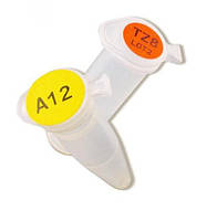 Этикетки LabXpert Тип B-499 Описание Этикетки для пробирок, криовиал, стеклянных сосудов и общей лабораторной маркировки Размеры 25.40 x 12.7 мм