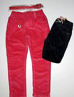 Вельветовые брюки на флисе для девочек Seagull 98  рр