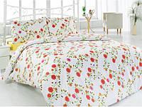 Комплект постельного белья Classi 2 Сп. 175x210 Grazia Бордовый