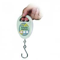 Подвесные весы HDB-N Тип HDB 10K10N Wдge-bereich 10 kg Дискрет-ность 10 г Масса 150 г Размеры(Ш ´ Д ´ В) 70 x 25 x 105 мм