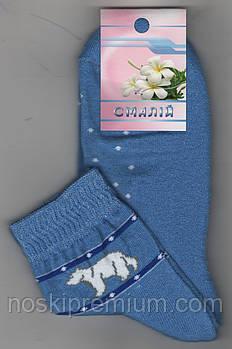 Носки женские махровый след х/б Смалий, 23-25 размер, рисунок 01 голубые