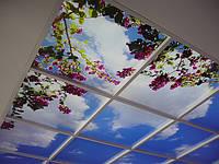 Установка светодиодных потолков «Private Space», фото 1