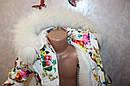 Зимний комбинезон +куртка на девочку 2-3,3-4,4-5,5-6 лет натуральная опушка (писец-Белый альбинос), фото 2