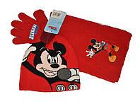 Шапочка , шарф,  перчатки Мики Маус