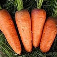 Семена моркови Болтекс (250 гр) средняя тип шантане, фото 1
