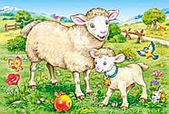 """Пазлы Castorland B-04416 """"Животные. Мамы и дети"""" 4 в 1  (B-04416), фото 3"""