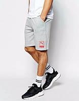Шорты Puma, шорты пума, серые, мелкое лого, мужские, ф3493
