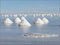 Соль морская в мешках по 25 кг (Турция)