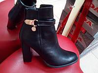 Классические демисезонные  ботинки женские на каблуке Nivelle из натуральной кожи.