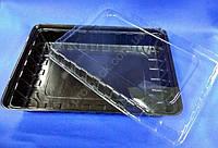 Упаковка для суши коричневая с крышкой 27,8х19,5см, ПС-61ДК, 1шт