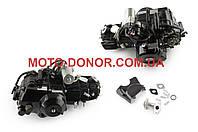 """Двигатель   на квадроцикл (ATV) 110cc   (АКПП, 1 передача вперед и 1 назад)    """"TZN"""""""