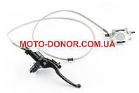 Тормозная система дисковая (в сборе, задняя)   на квадроцикл (ATV) 110/250   (mod:1)