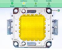 Светодиодная матрица прожектора зеленая (50 Вт)