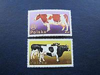 2 марки Польша коровы