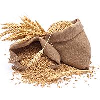 Зерно, семена, крупы