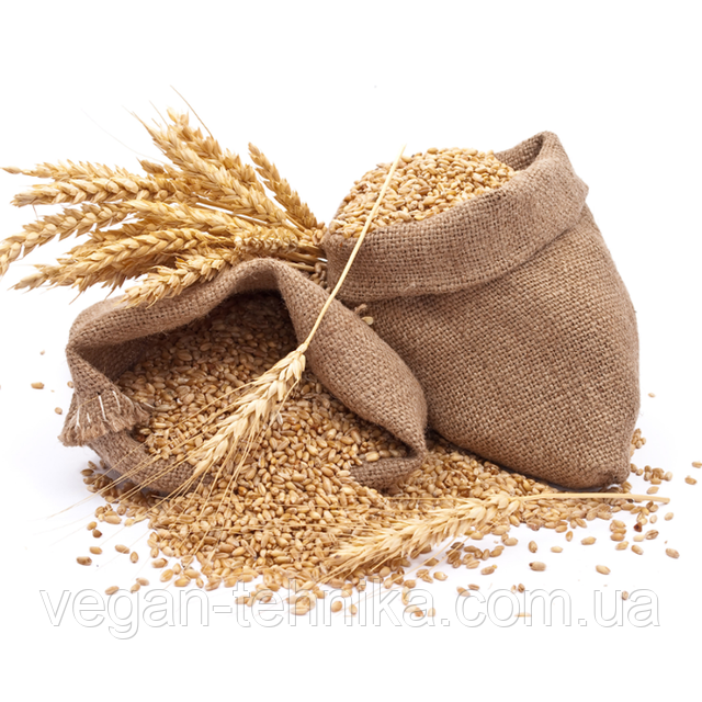 Зерновые культуры органические - злаковые, масличные, бобовые