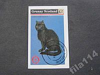 Блок Грюнэй Шотландия 1984 фауна кошка