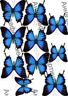 Вафельная картинка бабочки большие
