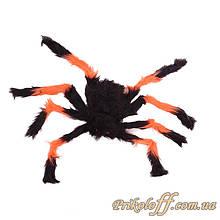 Большой паук на Хэллоуин павук