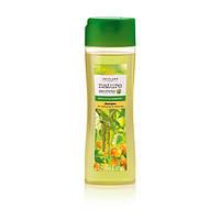 Восстанавливающий шампунь для блеска волос «Береза и морошка»