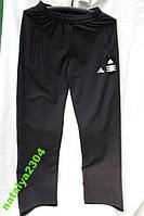 Спортивные мужские брюки утепленные Adidas