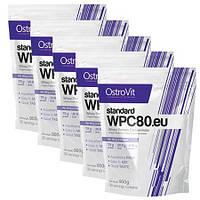 Протеин OstroVit WPC 80 900 грамм