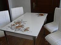"""Комплект стол и стулья для кухни """"Цветы какао"""" (Лотос-М), фото 1"""
