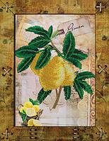 Набор для креативного рукоделия Фрукты. Лимон