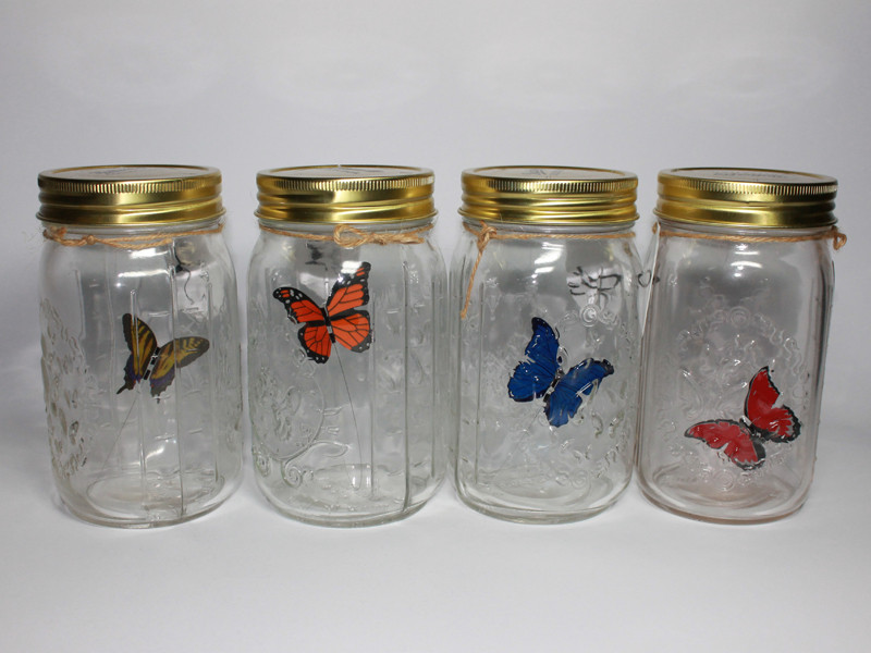 Электронная Бабочка в Банке 4 вида
