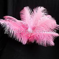 Перо страуса, 27-30 см, розовый